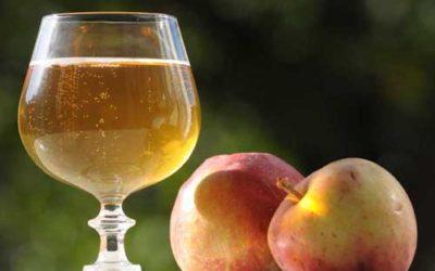 Сидр (Cidre)