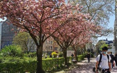 Le printemps à Rouen
